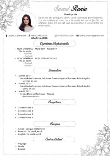 exemple de cv attrayants