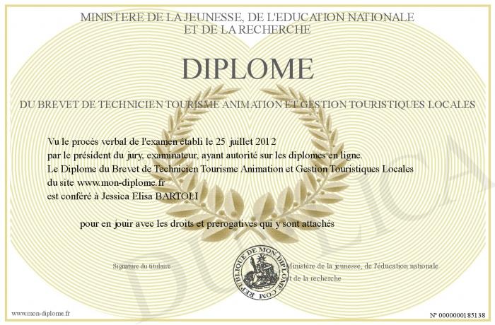 cv anglais titulaire du permis b