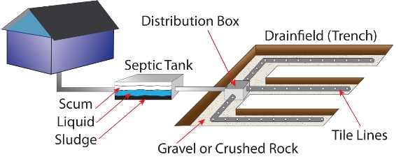 Septic Tank Pumping  Cleaning Commonwealth Waste Solutions
