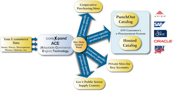 Ariba PunchOut What you need to know CoreXpand Blog