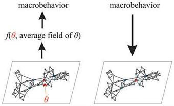 Fractional Dynamics Of Individuals In Complex Networks