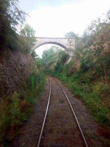 La ligne parcourue par le chemin de fer du Haut Forez.