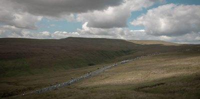 2014 Tour de France, Stage 1