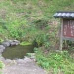 福島県 春の香りを感じて会津を走ろうはこちらからどうぞ