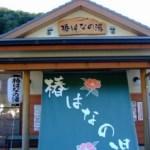 和歌山県 春の紀伊半島を日帰りで車旅はこちらからどうぞ