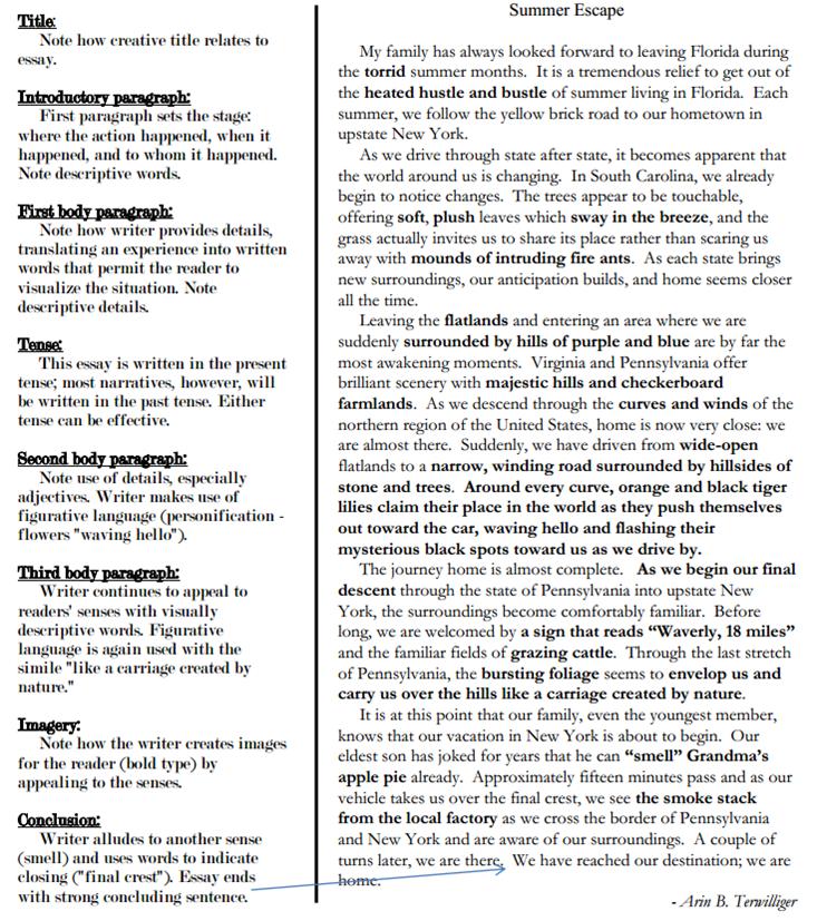 best ideas of writing a descriptive essay examples in format template essay sample narrative descriptive