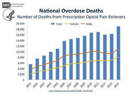 National Overdose Deaths—Number of Deaths from Prescription Opioid Pain Relievers.