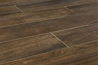 FREE Samples: Kaska Porcelain Tile - Amazon Wood Series ...