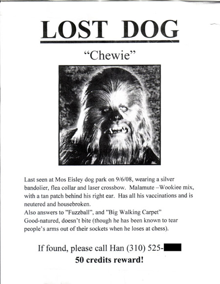 Lost Dog Flyer Template How To Find A Lost Cat Or Dog Infographic