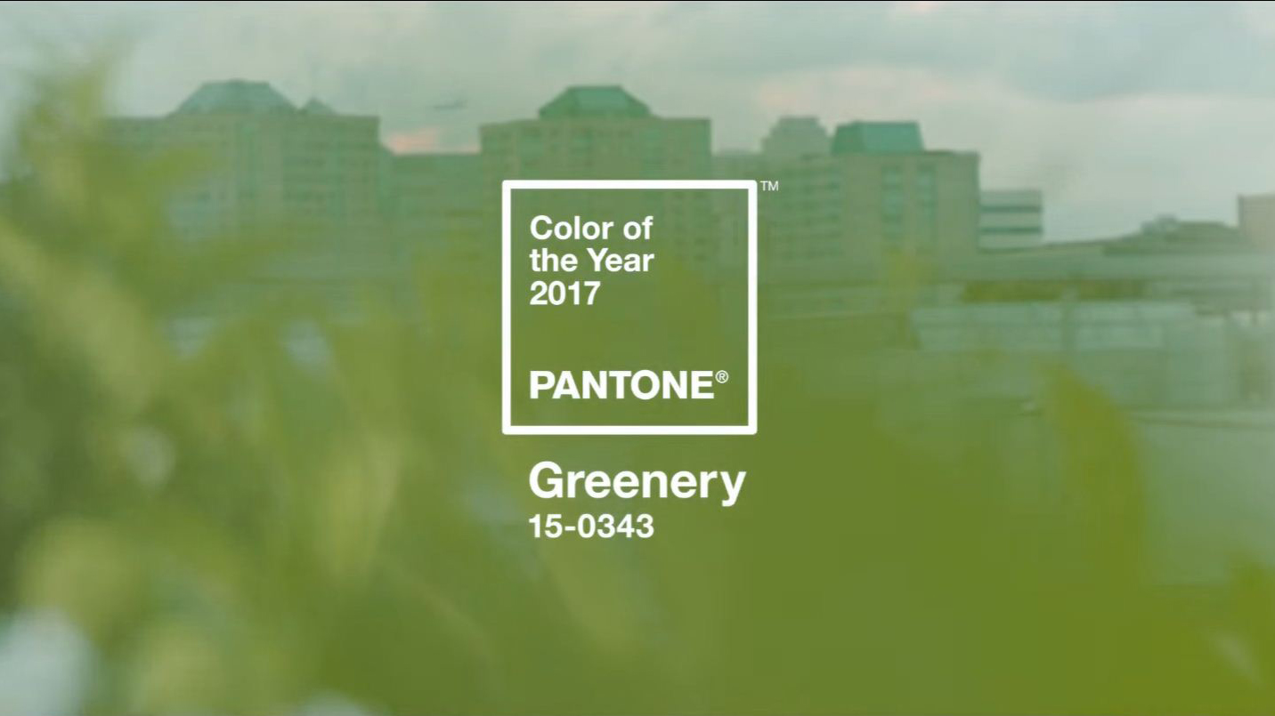 Pantone Greenery Quotgreenery Quot Is Pantone 39s 2017 Color Of The Year