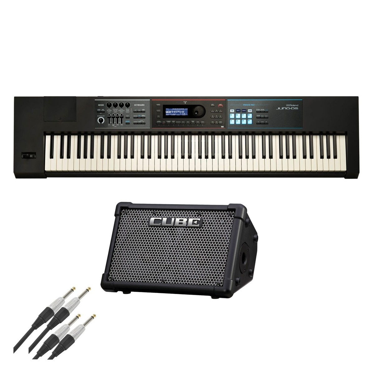 Battery Digital Roland Juno Ds88 And Cube Street Ex Battery Powered Bundle