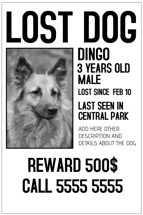 lost dog poster - Minimfagency