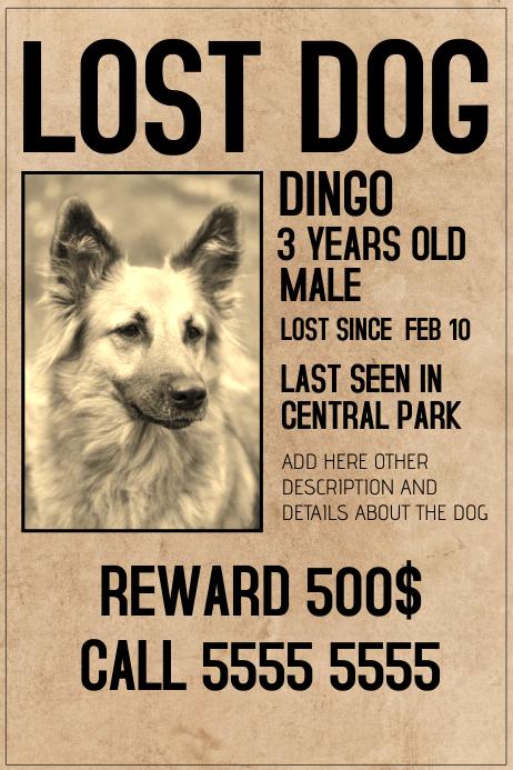 create lost dog flyer - Peopledavidjoel