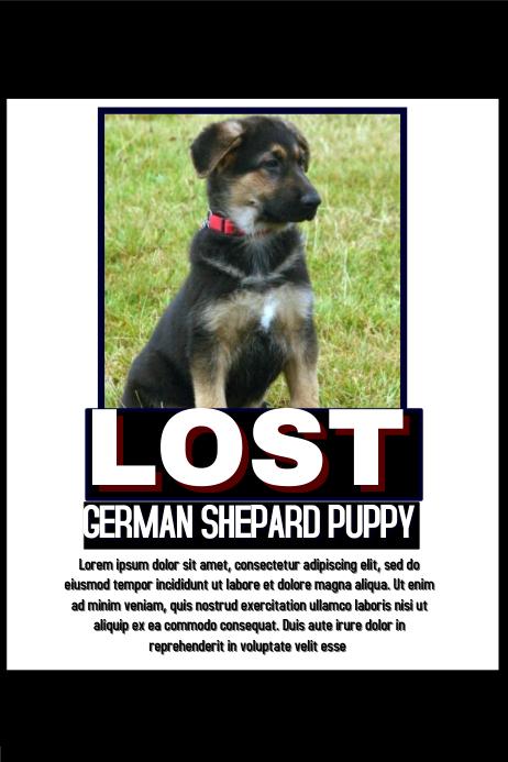 lost pet poster template - Canasbergdorfbib