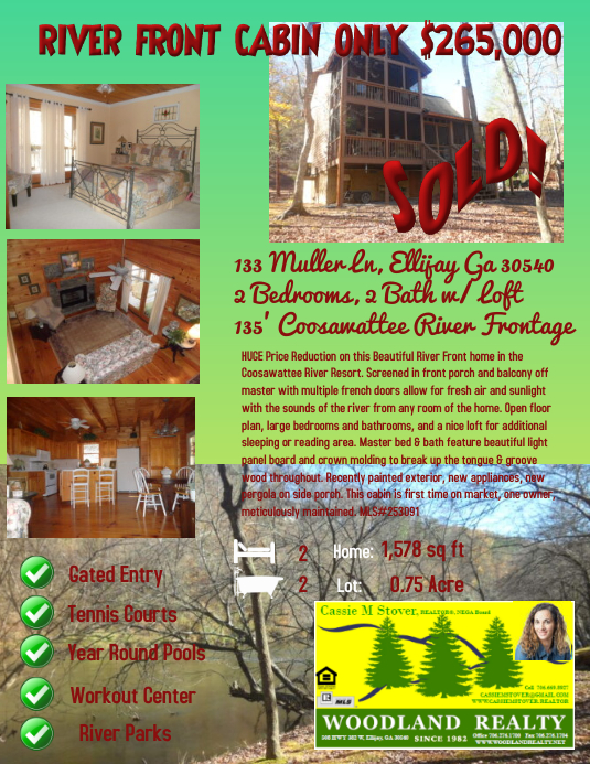 professional real estate flyers