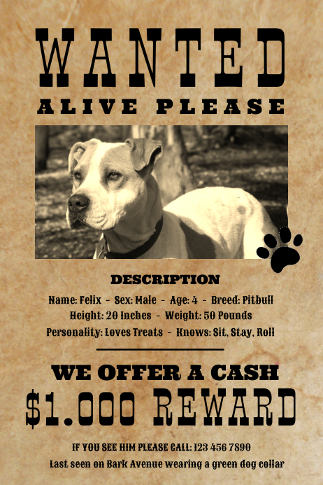 Vintage Wanted Dog Missing Pet Poster Template PosterMyWall