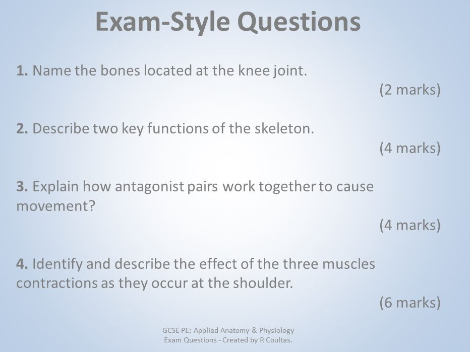 Anatomy And Physiology Essay Questions - Ivoiregion