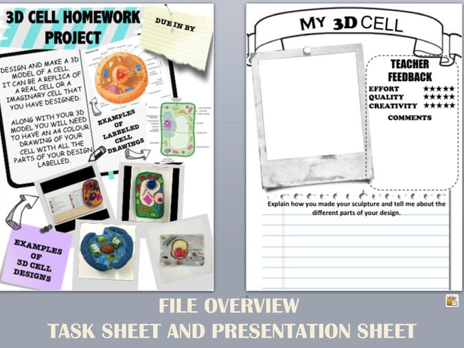 3D CELL HOMEWORK PROJECT SHEETS - photos of student examples and - Presentation Project