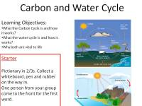 Printable Worksheets  Carbon Cycle Worksheets - Printable ...
