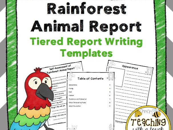 Rainforest Animal Report Tiered Report Writing Templates by
