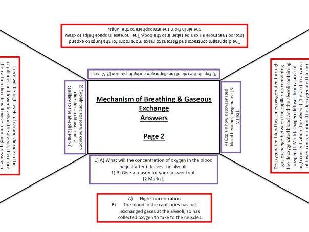 GCSE PE revision resources Tes