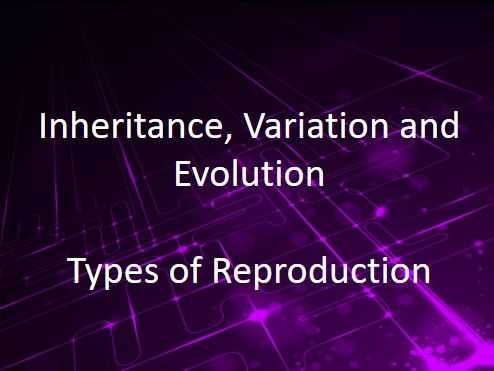 New AQA (9-1) GCSE Biology IVE Types of Reproduction (4611) by