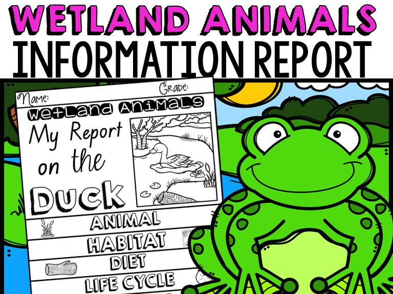 ANIMAL REPORT WETLAND ANIMALS INFORMATIVE WRITING RESEARCH