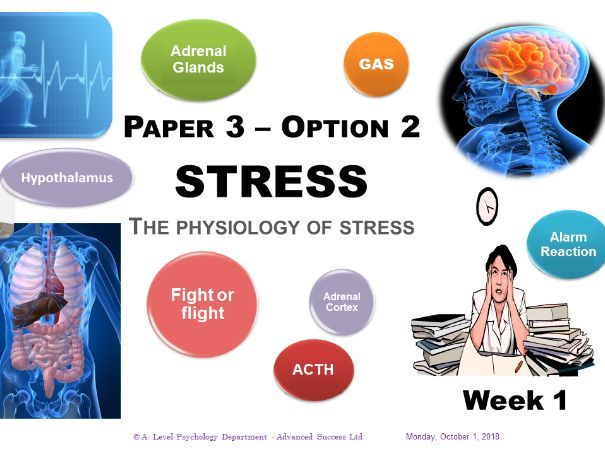 Powerpoint - Stress -Week 1 - The Physiology of Stress by