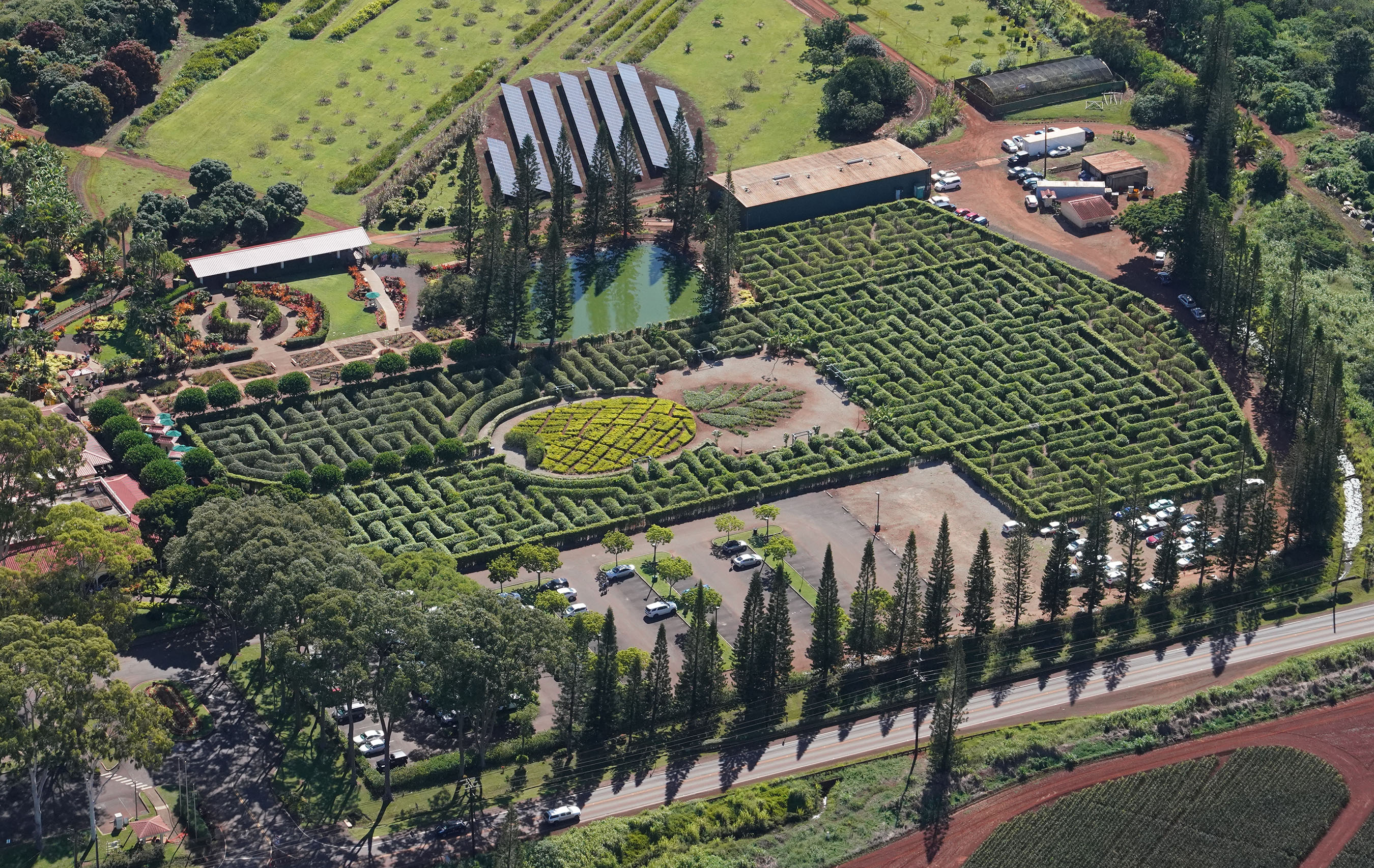 Pineapple Garden Maze Dole Plantation Aerial Honolulu Civil Beat