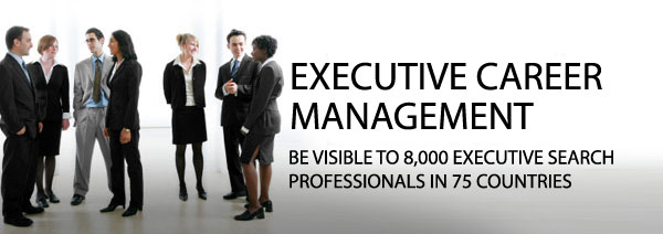 Executive Job Opportunities in India BlueSteps