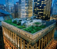 The Ultimate Rooftop Garden DIY Guide - GreenSocks