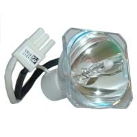 Phoenix Original Bulb Replacement for LG EBT43485103 ...