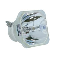 Ushio 1300022500 Original Replacement Bulb for ACTO LX200 ...