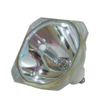 Panasonic TY-LA1001 / TYLA1001 Bare TV Lamp DLP LCD ...