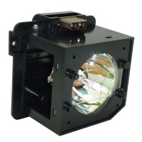 Rear Projection Tv Lamp Replacement. Projector Lamp For ...