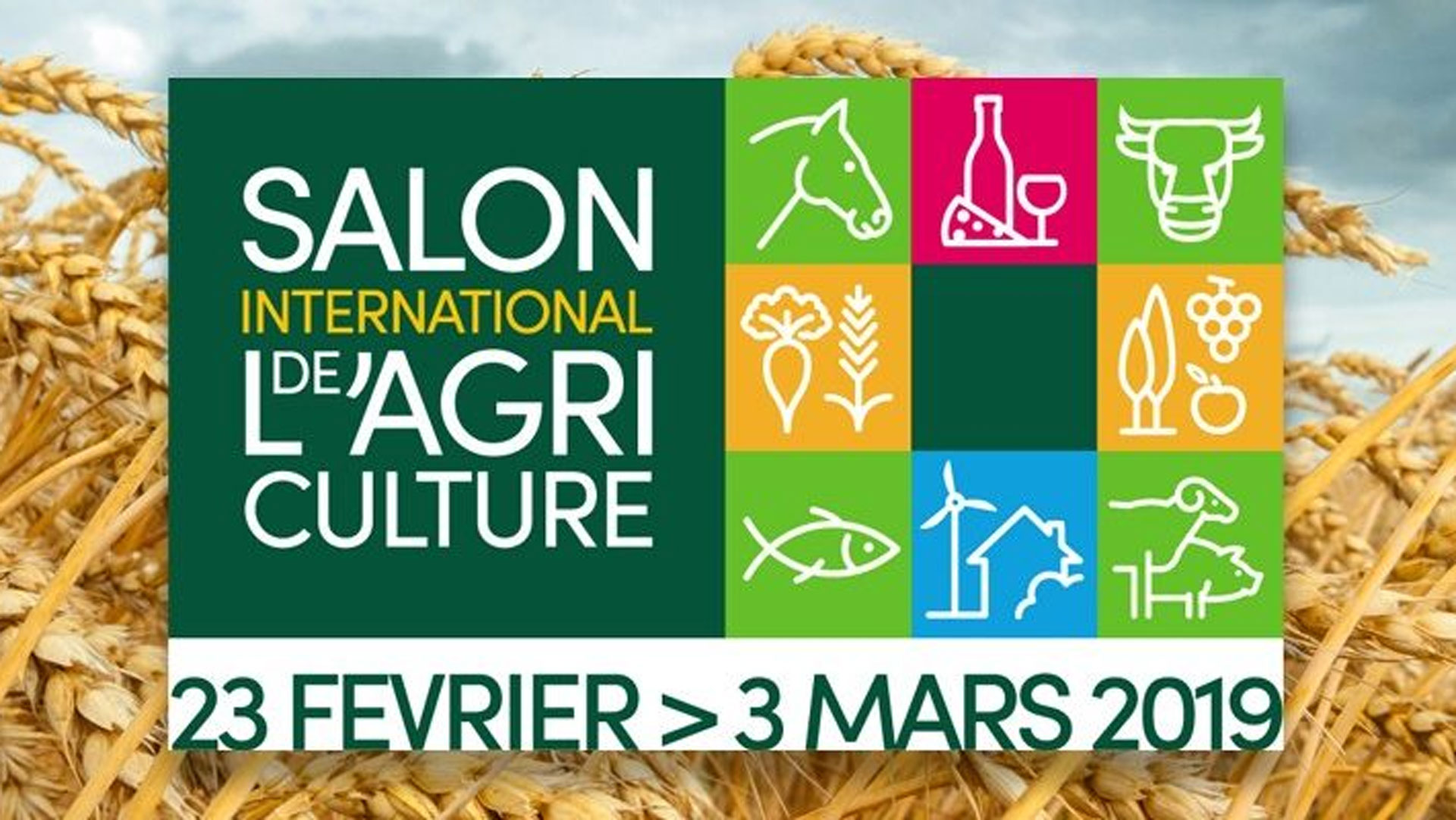 Le Salon De L Agriculture A Paris Salon International De L Agriculture International Agriculture