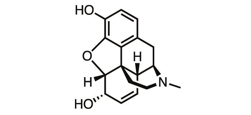 New opioid drugs Feature Chemistry World