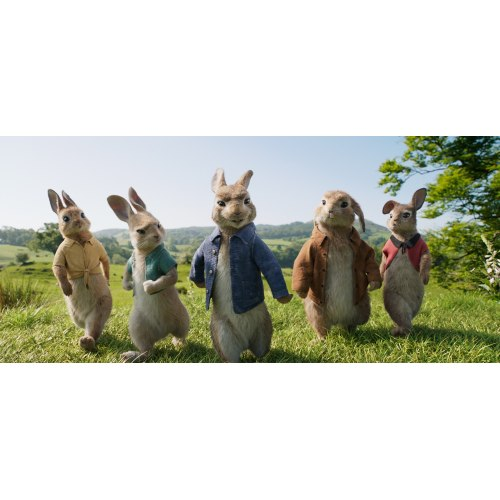 Medium Crop Of Watch Peter Rabbit Online Free