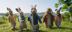 Small Of Watch Peter Rabbit Online Free