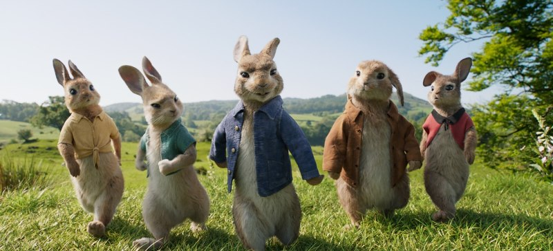 Large Of Watch Peter Rabbit Online Free