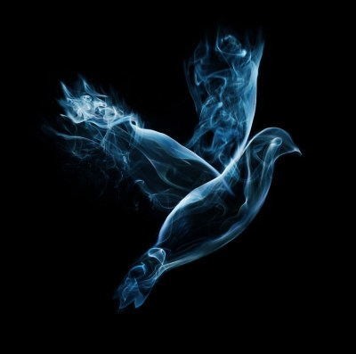 A dove flies on a black background made out of smoke Royalty-Free Stock Image - Storyblocks Images