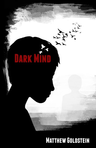 Dark Mind by Matthew Goldstein