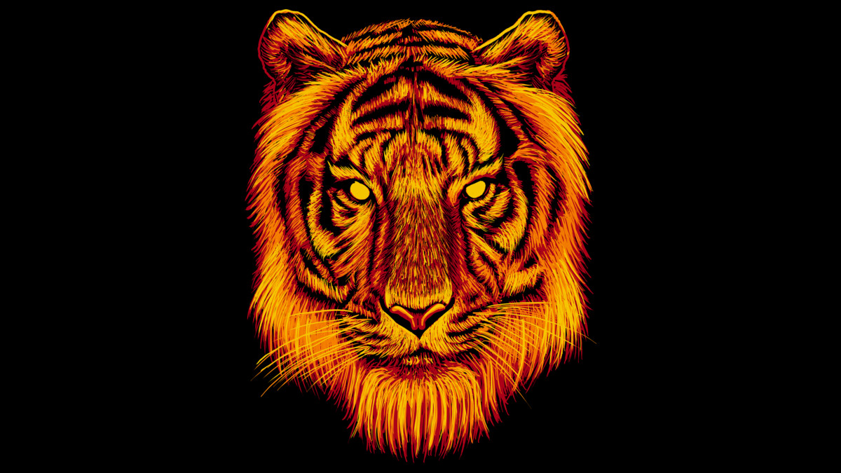 Volleyball Wallpaper Iphone Fire Tiger T Shirt By Fathi Dhia Design By Humans