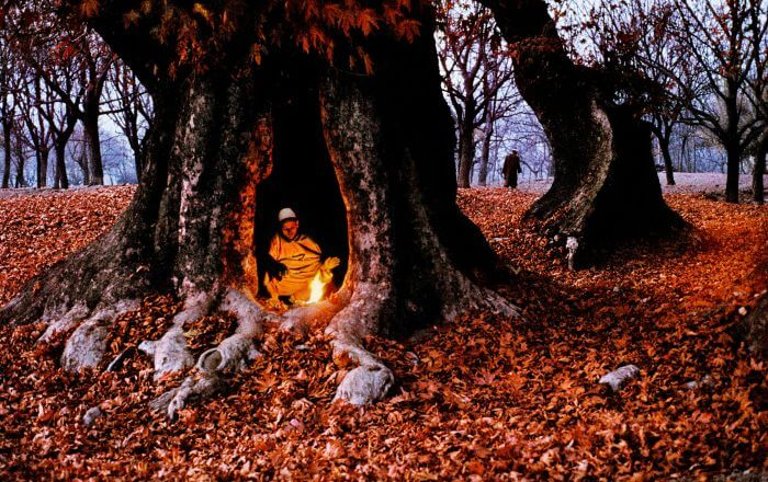Travel Wallpaper Quotes Most Beautiful Pictures Of Autumn In Jammu And Kashmir