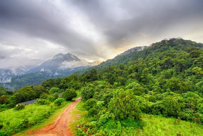 Ooty Hd Wallpapers All About The Silent Valley National Park In Kerala