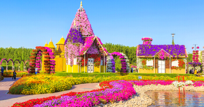 M Name Wallpaper Hd Dubai Miracle Garden A Virtual Tour To World S Largest