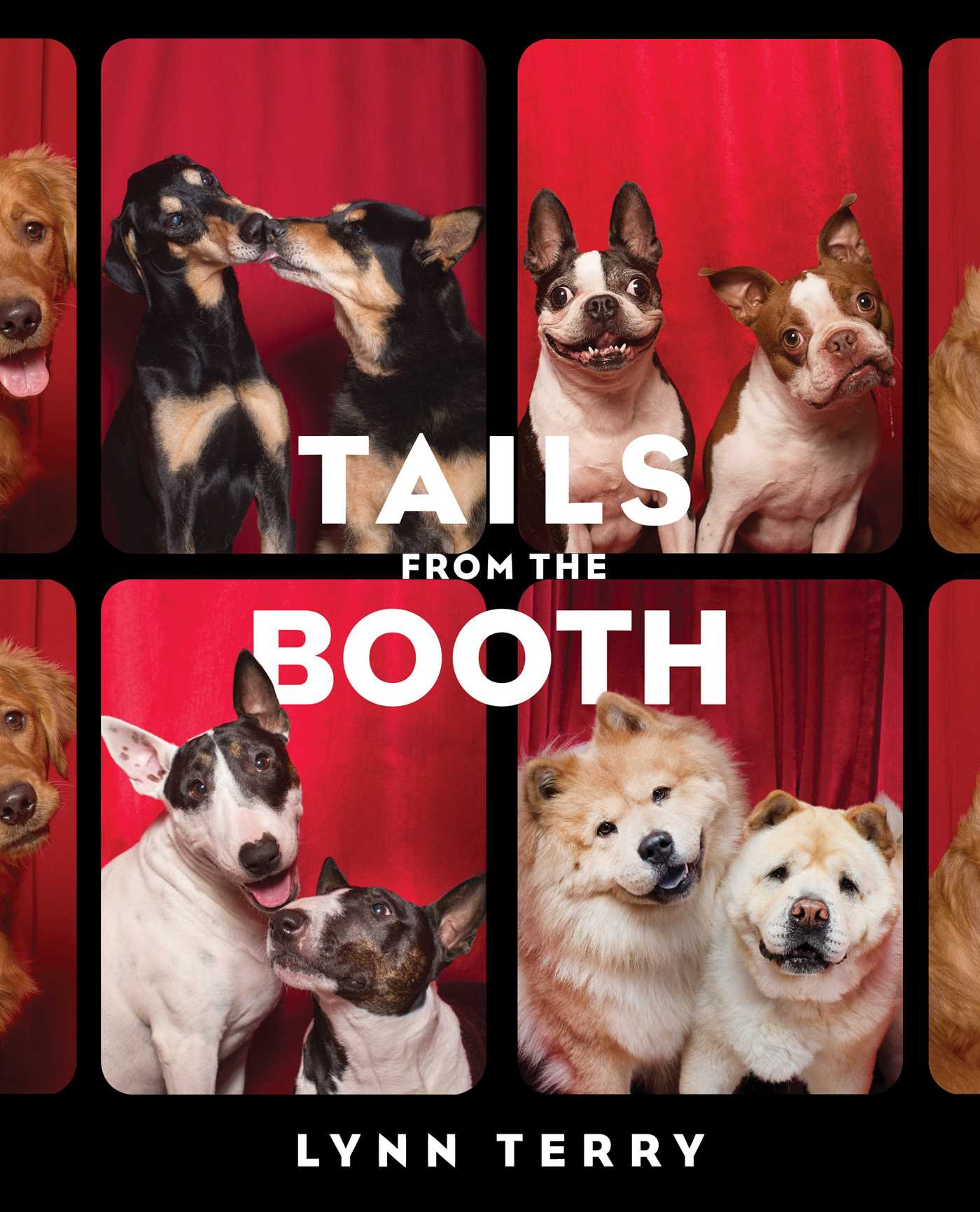 Cushty Tails From Booth Hr Tails From Booth Book By Lynn Terry Official Publisher Page Terry Dogs S Terry Dog Imdb bark post Terry The Dog