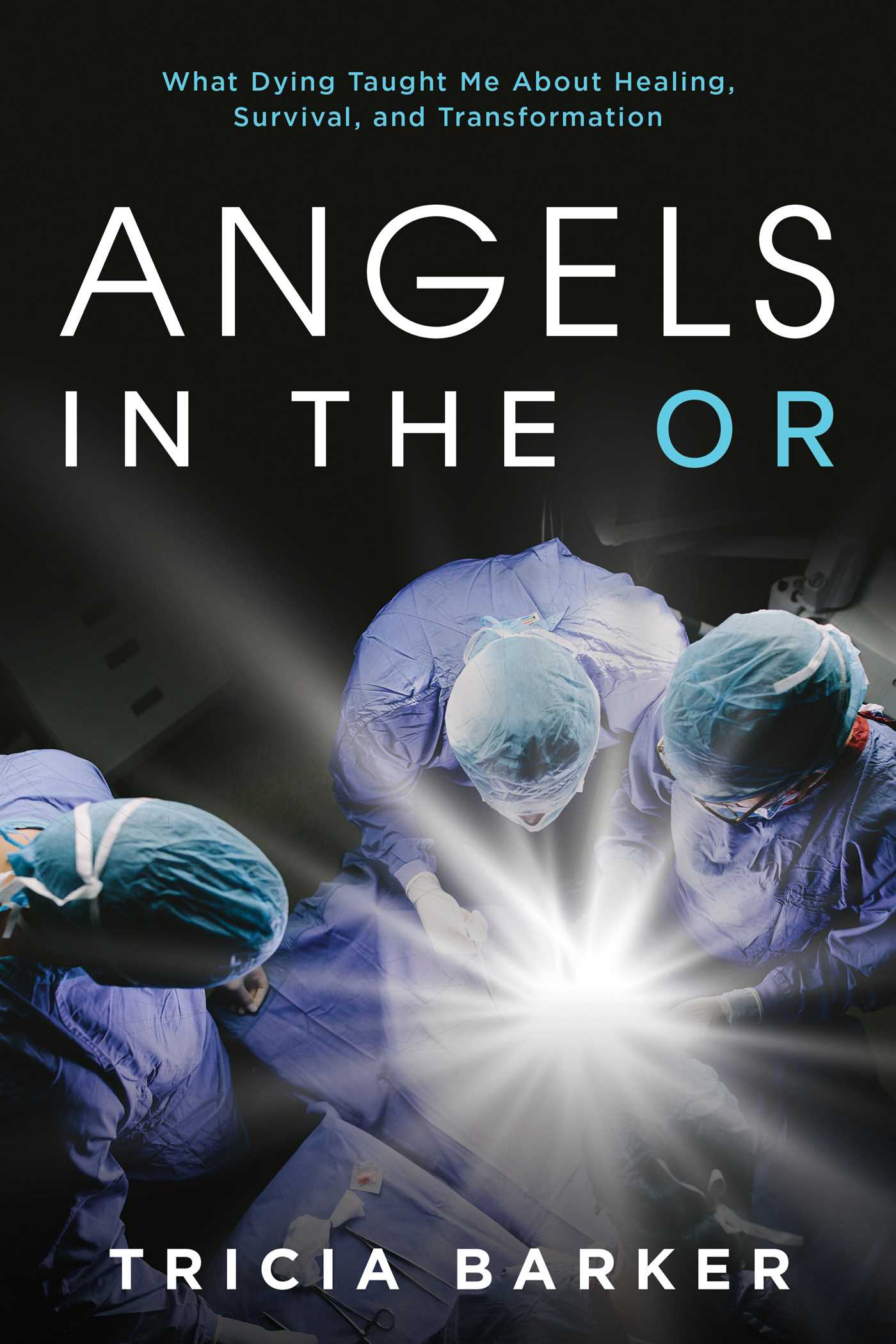 Image Book Angels In The Or Book By Tricia Barker Official Publisher Page