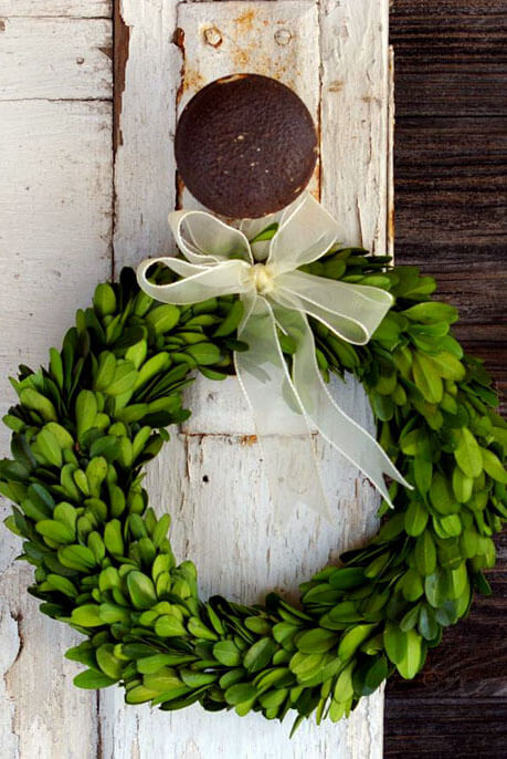 "Hanging Chair 8"" Preserved Round Boxwood Wreaths With Ribbon"