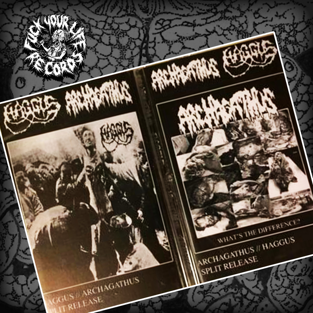 Split Wit Haggus Archagathus Split Tape From Fuck Your Life Records